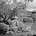 Pond At Heian Shrine - Kyoto by Daniel Hagerman