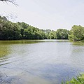 Pond At Norfolk Botanical Garden 9 by Jeelan Clark