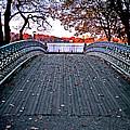 Pond Footbridge by S Paul Sahm