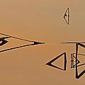 Pond Reeds Sunrise 3 by Robert Mitchell