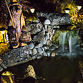 Pond Waterfall And Chuck The Bear by Mick Anderson