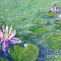 Green Pond With Water Lily by Cristina Stefan