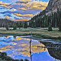 Pondering Reflections by David Kehrli