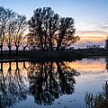 Ponds In Lomna 2 by Tomasz Dziubinski