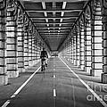 Pont De Bercy by Delphimages Photo Creations