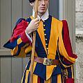 Pontifical Swiss Guard by John Greim