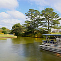 Pontoon Boat Ride On The Lake by Jeelan Clark