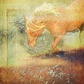 Pony In The Grasses by Alice Gipson