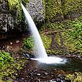 Ponytail  Falls - Columbia River Gorge Oregon by Silvio Ligutti