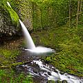 Ponytail Falls by Patricia Davidson
