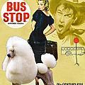 Poodle Standard Art - Bus Stop Movie Poster by Sandra Sij