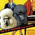 Poodle Standard Art - Love Is My Profession Movie Poster by Sandra Sij