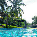 Pool Panorama by Terry Weaver