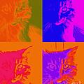 Pop Art Cat  by Ann Powell