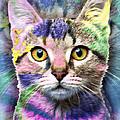 Pop Cat by Tony Rubino