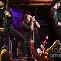 Pop Evil by Concert Photos