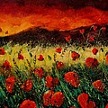 Poppies 68 by Pol Ledent
