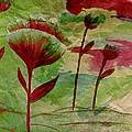 Poppies Abstract 3 by Barbara Griffin