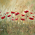 Poppies And Wild Flowers by Dorothy Maier