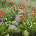 Poppies And Wildflowers by Richard Ginnett