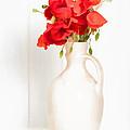 Poppies by Amanda Elwell