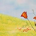 Poppies In A Field by Carolyn Doe