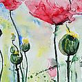 Poppies by Ismeta Gruenwald