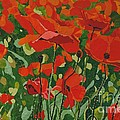 Poppies by Leah  Tomaino