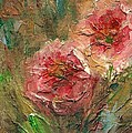Poppies by Mary Wolf