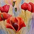 Poppies by Olga Lazareva