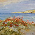 Poppies On The Beach by Maria Karalyos