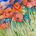 Poppies by SvetLana Grecova