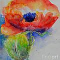 Poppy 1 by H Cooper