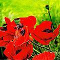 Poppy Art 7 by Roxy Hurtubise