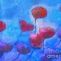Poppy Blues by Lutz Baar