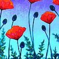 Poppy Corner by John  Nolan