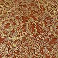 Poppy Design by William Morris