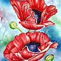 Poppy Duet by Lyn DeLano