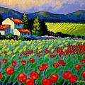 Poppy Field - Provence by John  Nolan