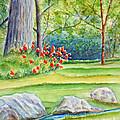 Poppy Garden by Kathryn Duncan
