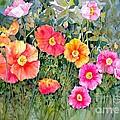 Poppy Garden by Sherri Crabtree