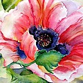 Poppy In The Pink by Barbara Jung