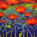 Poppy Meadow   Cropped 2 by John  Nolan
