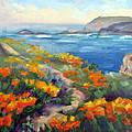 Poppy Path Pt. Lobos  by Karin  Leonard