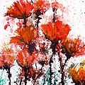 Poppy Splashes by Zaira Dzhaubaeva