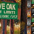 Population 1 Looking Fur 2 by Bob Pardue