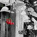 Porch Post Berries Color Punch by Ellen Cannon