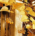 Porch Post Berries Glow by Ellen Cannon