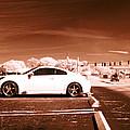 Porsche Car Side Profile Brown Near Infrared  by Sally Rockefeller