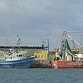 Port Canaveral Shrimp Boats by Bradford Martin